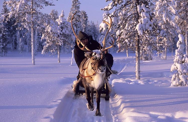 winter im wildnisdorf in schwedisch lappland abenteuer pur. Black Bedroom Furniture Sets. Home Design Ideas
