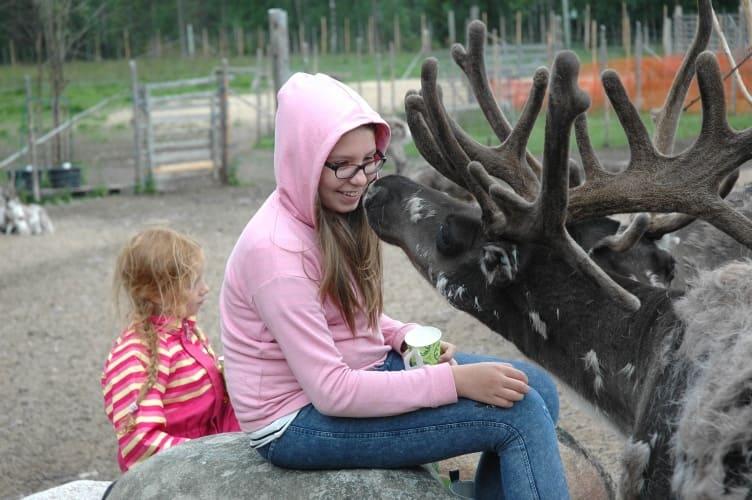 Familienurlaub in Finnisch-Lappland auf dem Reiterhof - jetzt buchen!