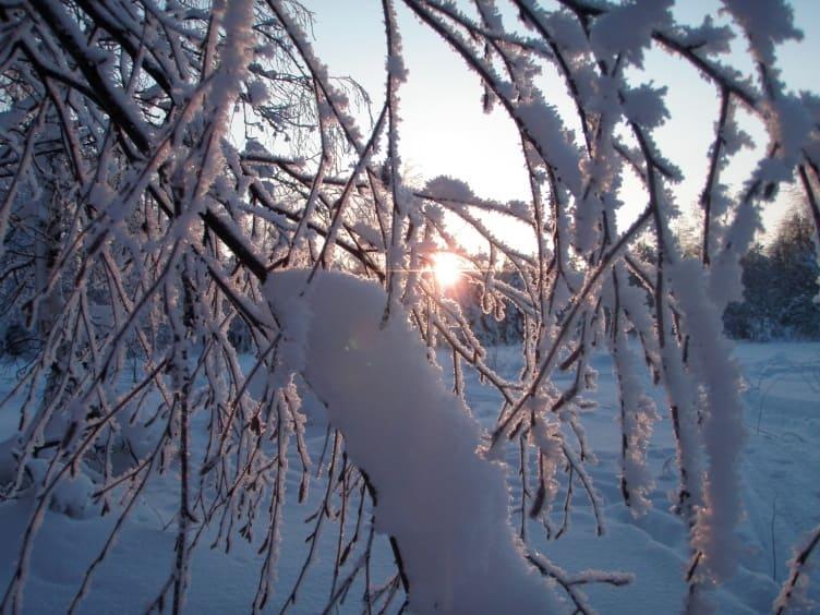 Fjordkind-Reisen Winterurlaub in Finnland