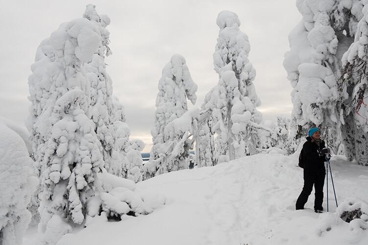 Winterurlaub in Vuokatti in Finnland