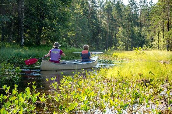 Familienabenteuer im Norden - Kanuwanderung und Ferienhaus in Schweden