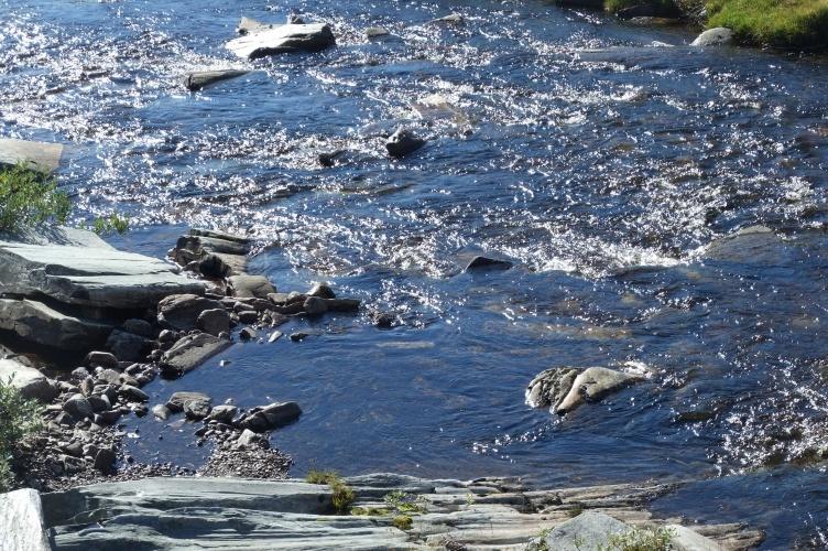 Aktivurlaub in Norwegen mit Kindern - bei Fjordkind-Reisen buchen