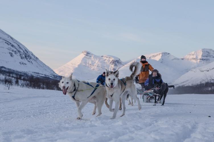 Winterurlaub bei Tromsø - Aktivurlaub unter Nordlichtern