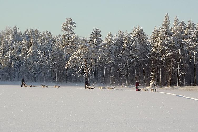 Abenteuerlicher Winterurlaub in Ostfinnland