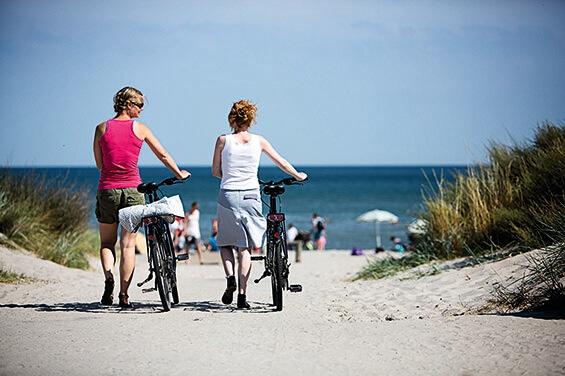 Radtour entlang des Nordseeküstenradwegs. Jütlands Küste, Insel und der Nationalpark Wattenmeer