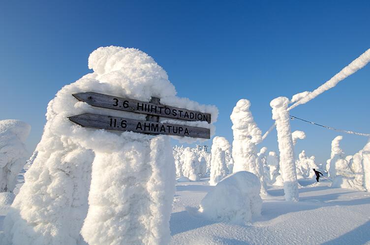 Winterurlaub in Lappland am Nationalpark Syöte