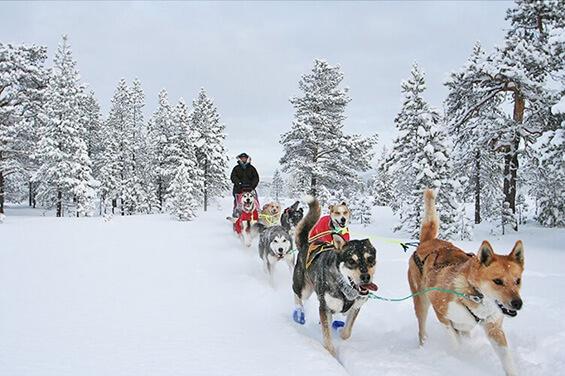 Schneespaß in Südnorwegen