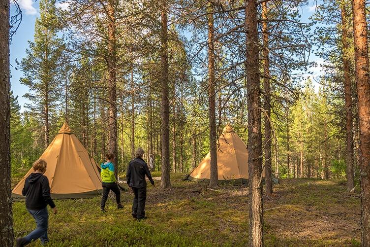 Arktische Wildnis in Schwedisch Lappland. Familienreise mit Kanutour, Wildniswanderung und Huskys
