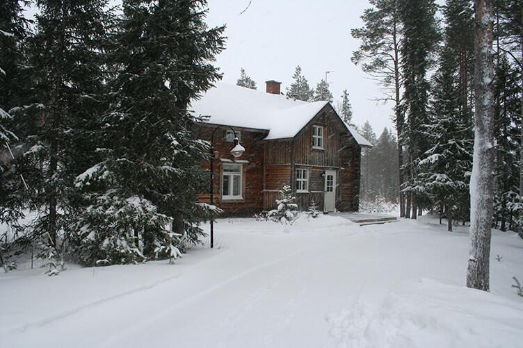Winterurlaub auf einer Huskyfarm in Südlappland