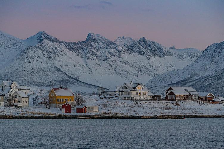 Insel der Wale - Familienreise nach Nordnorwegen