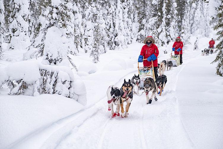 Winterspaß in Schwedisch Lappland