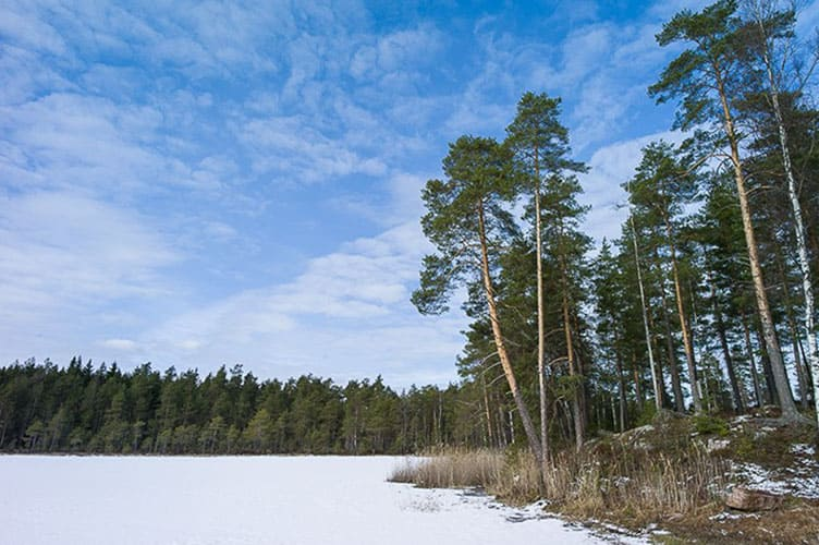 Winterurlaub Großes Ferienhaus Südfinnland mit Hot Pot und Sauna