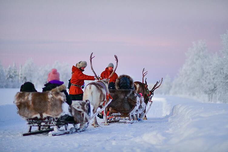 Winter-Gruppenreise für Familien im südlichen Lappland