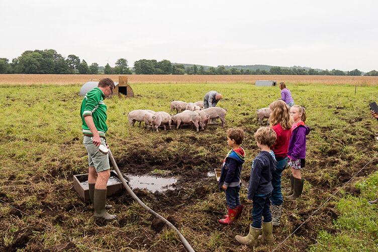 Kinder im Schlamm auf dem Bauernhof – so geht Urlau in Dänemark mit Kindern am besten.
