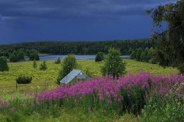 Aktivurlaub in Schweden, Lappland